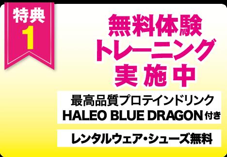 特典1 今だけ 無料体験トレーニング実施中 最高品質プロテインドリンク HALEO BLUE DRAGON付き レンタルウェア・シューズ無料